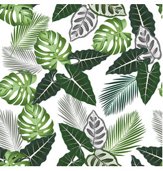 seamless pattern with tropical leaves alocasia vector image