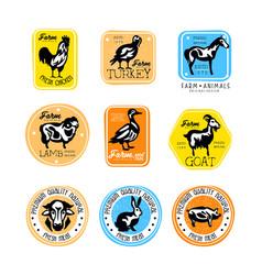 set vintage meat store labels logos vector image