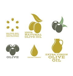 Olive oil Isolated labels and icons vector image vector image