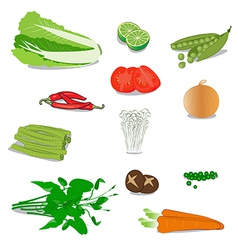 vegetable vector image vector image