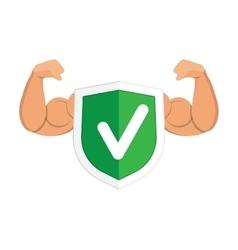Accept green shield icon vector image