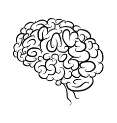Brain sketch for your design vector image vector image