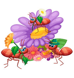 Ants with beautiful flower vector