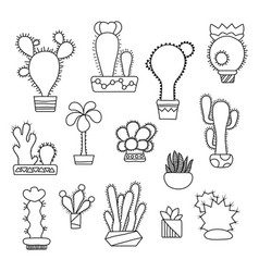 Hand-drawn cactus on white vector