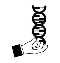 hand with molecule dna science vector image