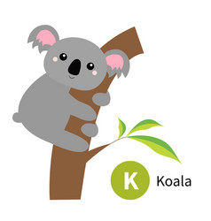 letter k koala zoo animal alphabet english abc vector image