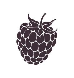 Silhouette blackberry or raspberry fruit vector