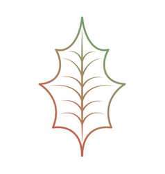christmas decoration leaf holly natural vector image