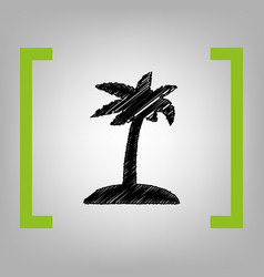 coconut palm tree sign black scribble vector image