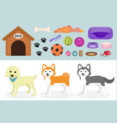 dogs stuff icon set with accessories for pets vector image
