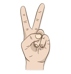 Hand peace or victory sign vector