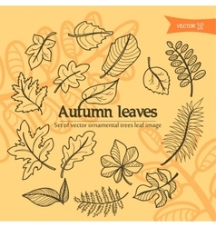 autumn2 vector image