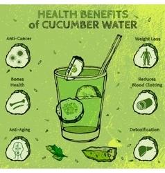 Cucumber Benefits Image vector image