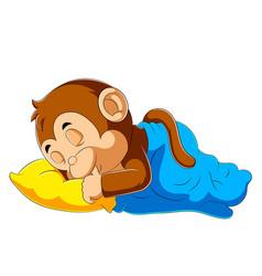Baby monkey sleeping with blanket vector