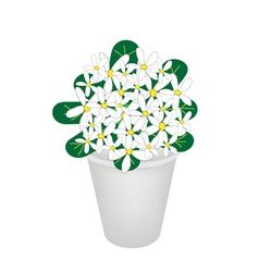 Beautiful Hydrangea Flower in A Flowerpot vector