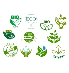 Bio eco and natural products green symbols vector image
