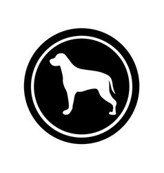 circular frame with figure retriever dog animal vector image