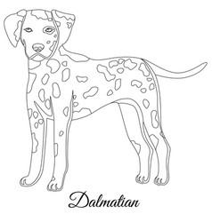 Dalmatian dog outline vector