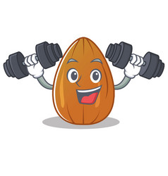 Fitness almond nut character cartoon vector