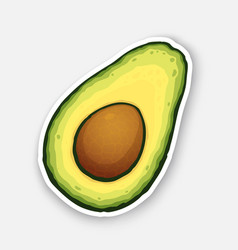 Half avocado fruit with seed inside vector