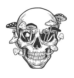 human skull with mushrooms sketch engraving vector image