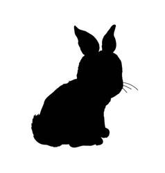 rabbit icon rabbit sign symbol on white vector image