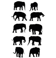 set black elephants vector image