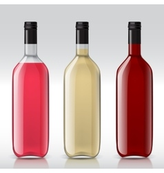Set of transparent bottles for different wines vector image