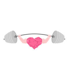 strong heart and barbell fitness love isolated vector image