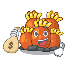 With money bag orange coral reef toys shape vector
