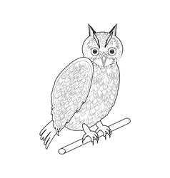 A monochrome sketch of an owl vector image