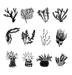 Coral black set vector