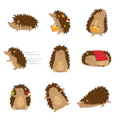 Cute hedgehogs in different poses set isolated on vector