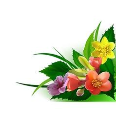Flowers corner vector