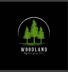 rustic retro vintage woodland evergreen pines vector image