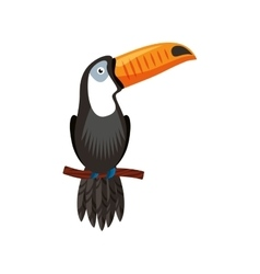 toucan tropical bird icon vector image