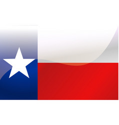 flag of texas vector image vector image