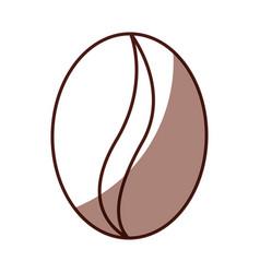 shadow coffee bean cartoon vector image