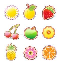 fruity design elements vector image