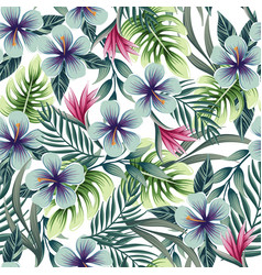 a seamless colorful pattern with tropical plants vector image