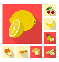 design of vegetable and fruit icon vector image