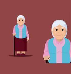grandmother cute cartoon vector image