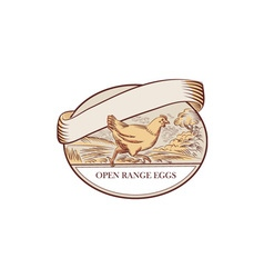 Hen Running Open Range Eggs Oval Drawing vector