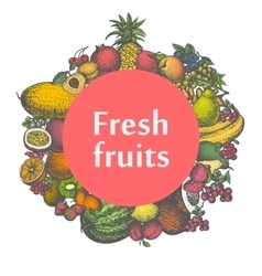 Mark sticker sign icon of fresh fruits vector