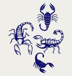 Scorpion Pandinus imperator vector