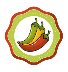 Sticker chili pepper vegetable icon vector
