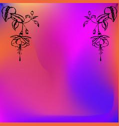 two engraved fuchsia flowesr black vector image