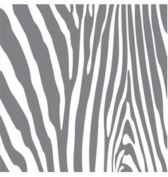 wild stripes pattern vector image