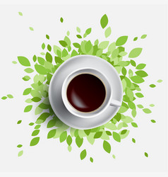 coffee and green leaves vector image