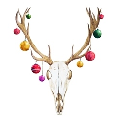 Christmas deer skull vector image vector image